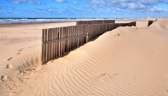 homok fogo keritesek