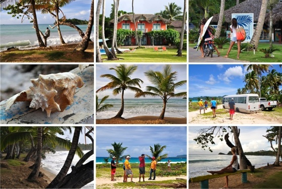 amazing tropics